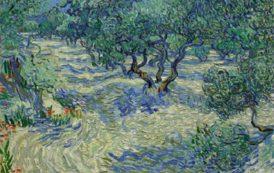Trovata una cavalletta intrappolata in un quadro di Van Gogh