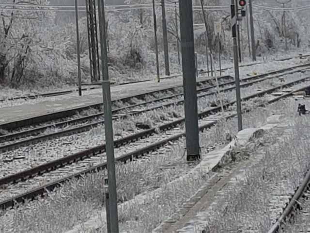 Allerta Neve in Liguria, Trenitalia garantisce solo il 70% dei treni