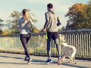 Giornata internazionale del cane, si celebra oggi il migliore amico dell'uomo