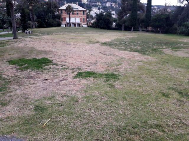 Parchi di Nervi, in arrivo 1 milione e 300mila euro per restauro e conservazione