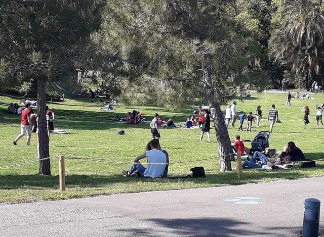 Parchi cittadini, linea dura del Comune contro cani senza guinzaglio e chi cammina sui prati