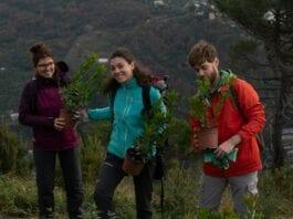 volontari thousand trees project