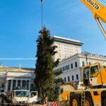 albero Natale De Ferrari