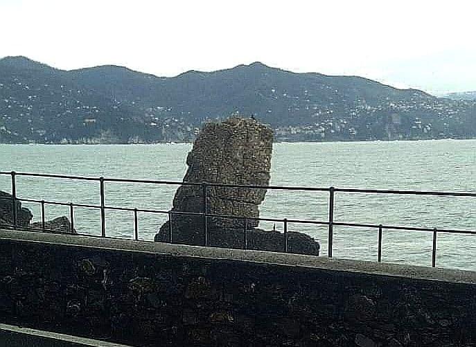 Pino della Carega