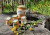 Miele dei Parchi